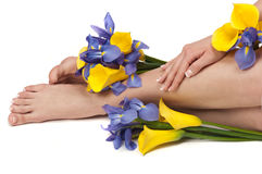 Spa. Pedicured feet, manicured hands and aromatic flowers in a spa Royalty Free Stock Photography