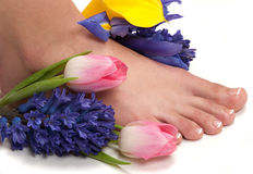 Spa. Pedicured feet, manicured hands and aromatic flowers in a spa  ( Easter Spa Stock Photography
