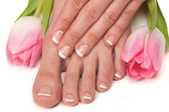 Spa. Pedicured feet and manicured hands with Easter tulips Stock Images