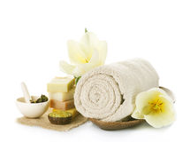 Spa. Beautiful Spa treatments isolated on a white background Royalty Free Stock Image