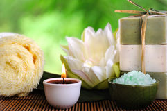 Spa. Products on the bamboo surface Stock Images