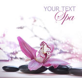 Spa. Beautiful Spa concept with copy-space for text Stock Photo