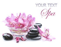 Spa. Beautiful Spa Concept. Spa Stones and Flowers close-up Stock Images
