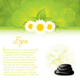 Spa. Background with spa stones and white flowers Stock Photography