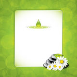 Spa. Background with spa stones and white flowers.Vector Stock Photography