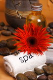 spa fotografia royalty free