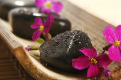 Spa. Stones with pink flowers Stock Image