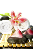 Spa accessories. Isolated on the white background Stock Images