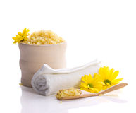 Spa accessories and flowers Stock Image