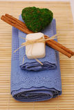 SPA accessories for wellness or relaxing Royalty Free Stock Image