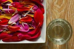 Spa aroma of flowers Stock Image