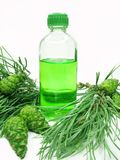 Spa aroma oil bottle with fir extract Royalty Free Stock Photos