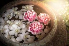 SPA & aromatherapy έννοια, κόκκινο και άσπρο λουλούδι frangipani ένα wat Στοκ Εικόνες