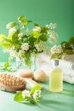 SPA aromatherapy με τη βούρτσα ουσιαστικού πετρελαίου ανθών κερασιών πουλιών Στοκ φωτογραφίες με δικαίωμα ελεύθερης χρήσης