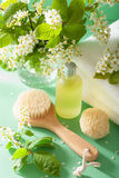 SPA aromatherapy με τη βούρτσα ουσιαστικού πετρελαίου ανθών κερασιών πουλιών Στοκ Εικόνες