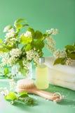 SPA aromatherapy με τη βούρτσα ουσιαστικού πετρελαίου ανθών κερασιών πουλιών Στοκ Φωτογραφίες