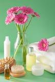 SPA aromatherapy με τη βούρτσα ουσιαστικού πετρελαίου λουλουδιών gerbera Στοκ Εικόνα