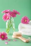 SPA aromatherapy με τη βούρτσα πετσετών λουλουδιών gerbera Στοκ Φωτογραφία