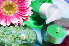 Spa and aromatherapy Royalty Free Stock Images