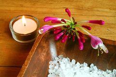 Spa aromatherapy Royalty Free Stock Photos