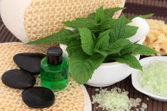 Mint Herb Spa Treatment. Spa and aromatherapy accessories with mint herb leaf sprigs stock photography