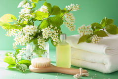 Spa aromatherapy with bird cherry blossom essential oil brush to Royalty Free Stock Photo
