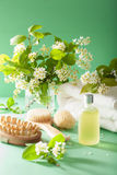 Spa aromatherapy with bird cherry blossom essential oil brush to Royalty Free Stock Photos