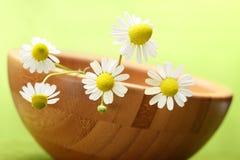 Spa and aromatherapy Royalty Free Stock Photos