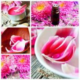 Spa and Aromatherapy Collage Royalty Free Stock Images