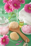 Spa aromatherapy with gerbera flowers essential oil brush Royalty Free Stock Image