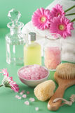 Spa aromatherapy with gerbera flowers essential oil brush Stock Photography