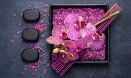 Spa and aromatherapy with orchids Stock Photography