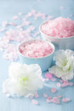 Spa aromatherapy set with azalea flowers and herbal salt Royalty Free Stock Photo