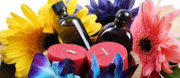 Spa aromatiska olje- flaskor Royaltyfri Foto