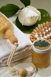 Spa arrangement. Some objects of relaxation and body treatment Stock Photo