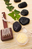 Spa arrangement. With leaves stones brush and sea salt Royalty Free Stock Image