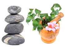 Spa and ayurveda Stock Image