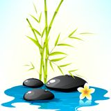 Spa Background. Illustration of spa stone with bamboo leaves and flower Royalty Free Stock Images