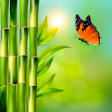 Spa background with bamboo and butterfly. Royalty Free Stock Photos