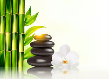 Spa background with bamboo and stones. Vector Royalty Free Stock Images