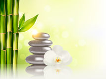 Spa background with bamboo and stones. Stock Images