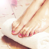 Spa background of beautiful female feet, flowers and petals. Legs, flowers, petals and ceramic bowl. Spa, recreation and skin care concept Royalty Free Stock Photography