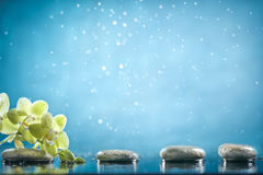 Spa background. Black massage stones and orchid in blue water background stock photos