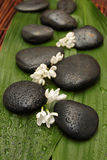 Spa background. Black stones and white flowers Royalty Free Stock Photo