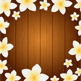 Spa background with frangipani flowers Stock Image