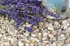 Spa background with Lavender Royalty Free Stock Photography