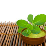 Spa background with mud and green leaves. On bamboo mat Royalty Free Stock Photos