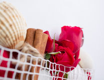 Spa background with red roses. Royalty Free Stock Photo