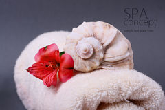 SPA background. Shallow DOF Stock Images