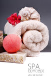 SPA background. Shallow DOF Royalty Free Stock Images